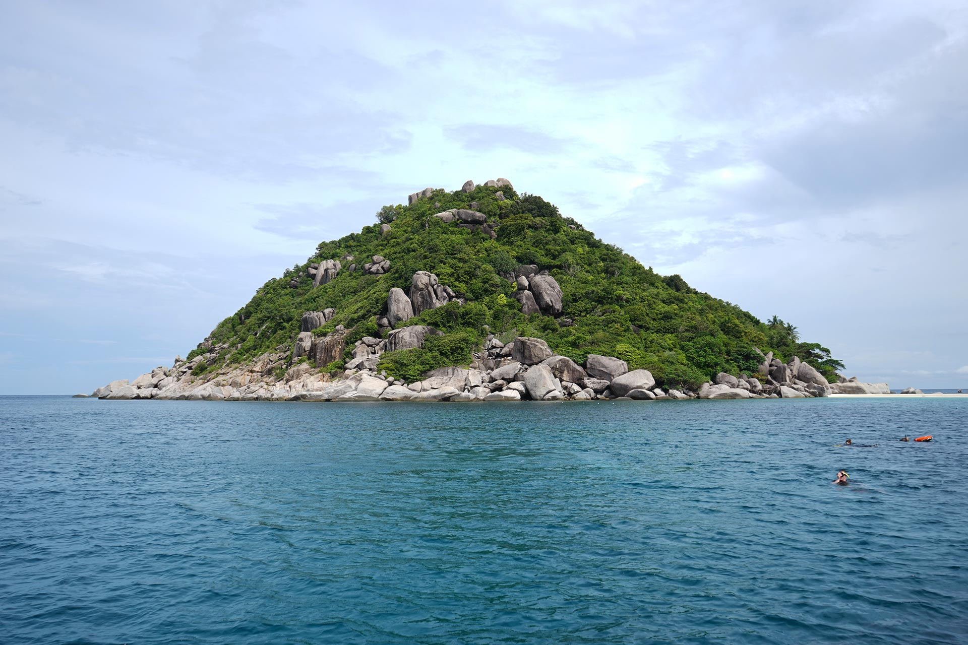 ko tao diving experience