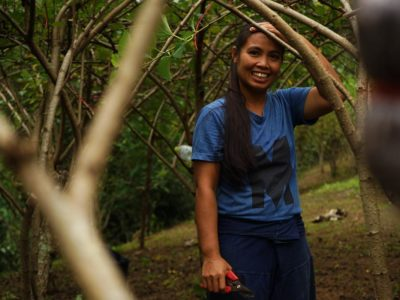 Mulberry Magic: Life on a Den Chai Farm
