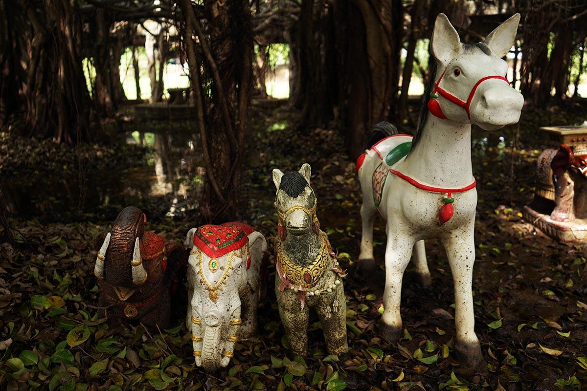 phimai banyan tree spirits